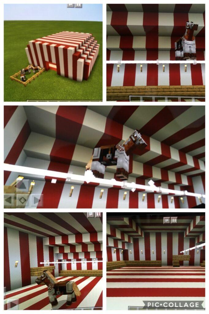 AR (Y5) Circus