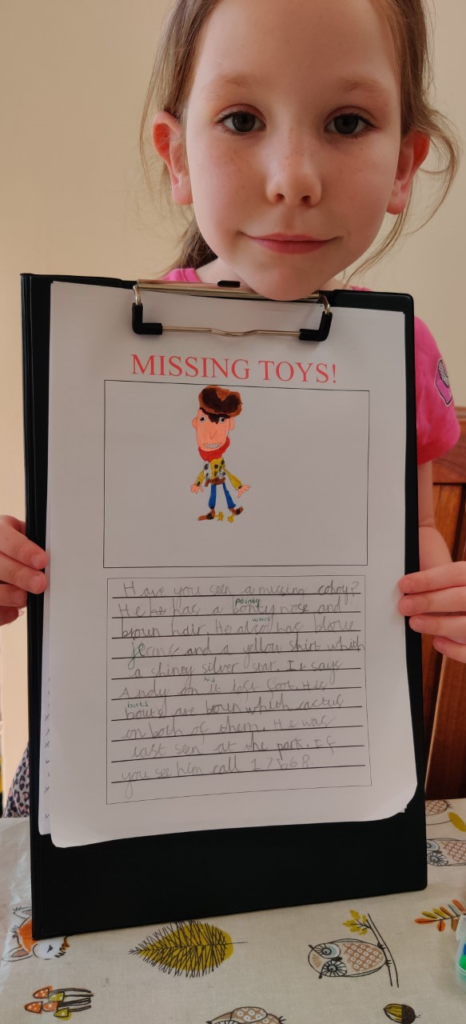 RN (Y1) Missing toy report